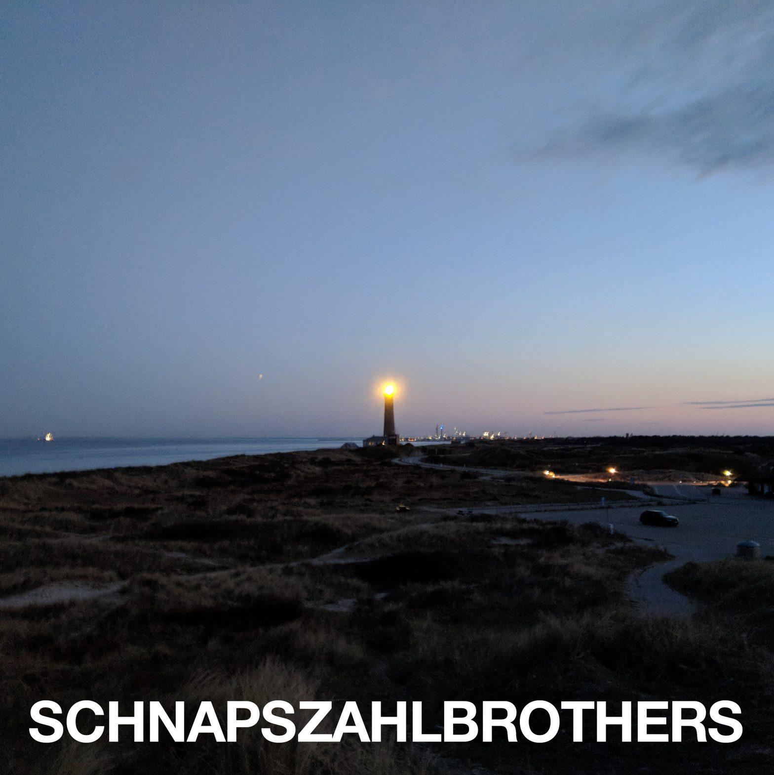 Cover-Image zu Schnapszahlbrothers